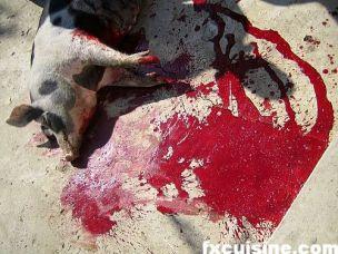 moldavia-pig-slaughter-09-500